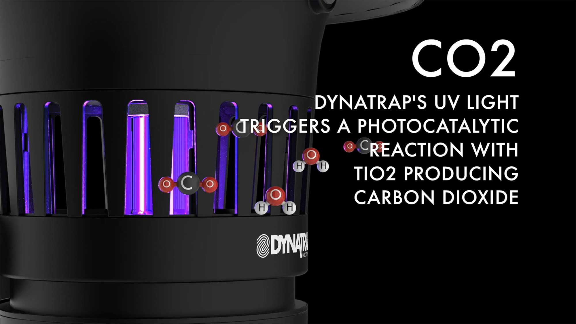 DynaTrap, mosquito killer, fly trap, bug zapper